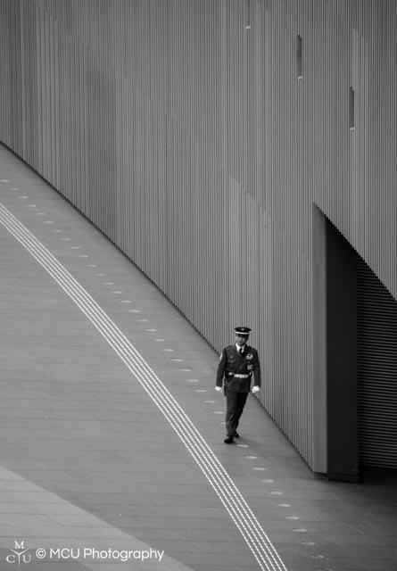 2_Walking_the_Line.jpg