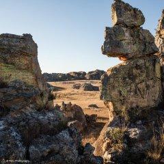 landscape_madagascar23.jpg
