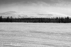 landscape_russia14.jpg
