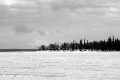 landscape_russia20.jpg