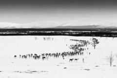 landscape_russia22.jpg