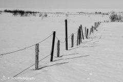 landscape_russia23.jpg