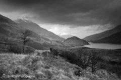5_Winter_in_Glencoe.jpg