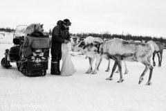 nature_russia15.jpg
